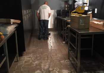 Blue Sushi Restaurant Floors Stripping and Sealing 001 d3bf764e9288f738f6c8ab727b99b27c 350x245 100 crop Blue Sushi Restaurant Floors Stripping and Sealing