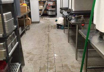 Blue Sushi Restaurant Floors Stripping and Sealing 007 8c2c23559142d1b87f4d4e064edd2f4c 350x245 100 crop Blue Sushi Restaurant Floors Stripping and Sealing