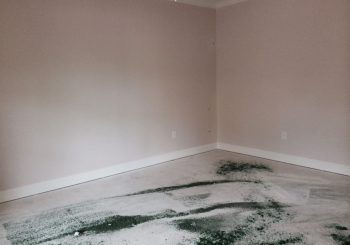 Phase 2 Residential House Post Construction Clean Up Service in Dallas TX 13 691d0ccba43b272c5edee22bdf8afe35 350x245 100 crop Phase 2 Residential House Post Construction Clean Up Service in Dallas, TX