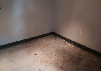 Records Studio Stripping and Sealing Concrete Floors in Dallas TX 02 9b2bc0a2cb7c2fd849fc66f9b2f65e80 350x245 100 crop Records Studio Stripping and Sealing Concrete Floors in Dallas, TX