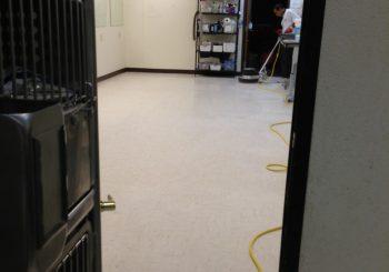 Waxing Floors in a Grooming School at Arlington TX 12 91c56bc35fcfcba97bebc9012e09cfb0 350x245 100 crop Waxing Floors in a Grooming School at Arlington, TX