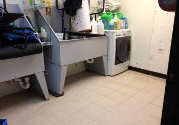 Waxing Floors in a Grooming School at Arlington TX 13 c2edfb6eb990dcaea075fcd148e40fe2 350x245 100 crop Waxing Floors in a Grooming School at Arlington, TX